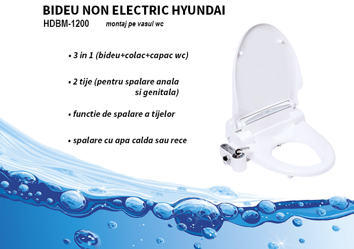 bideu non electric hyundai hdbm 1200